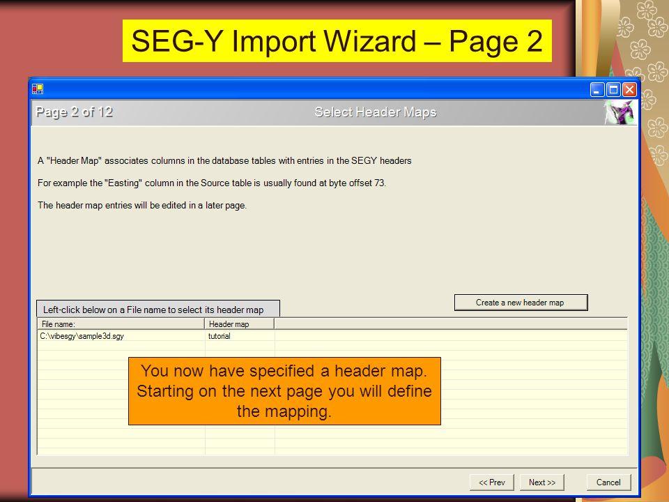 SEG-Y Import Wizard – Page 2