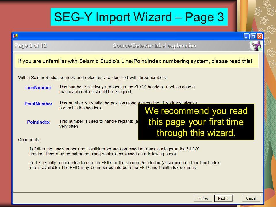 SEG-Y Import Wizard – Page 3
