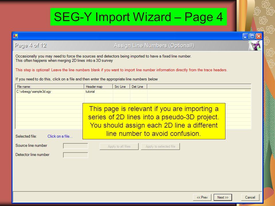 SEG-Y Import Wizard – Page 4