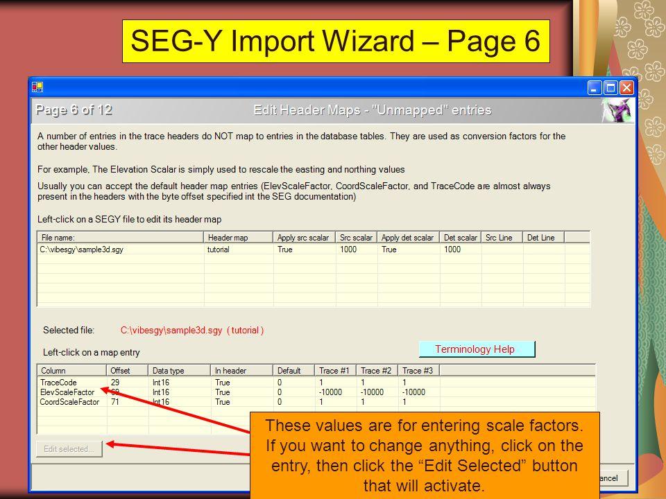 SEG-Y Import Wizard – Page 6