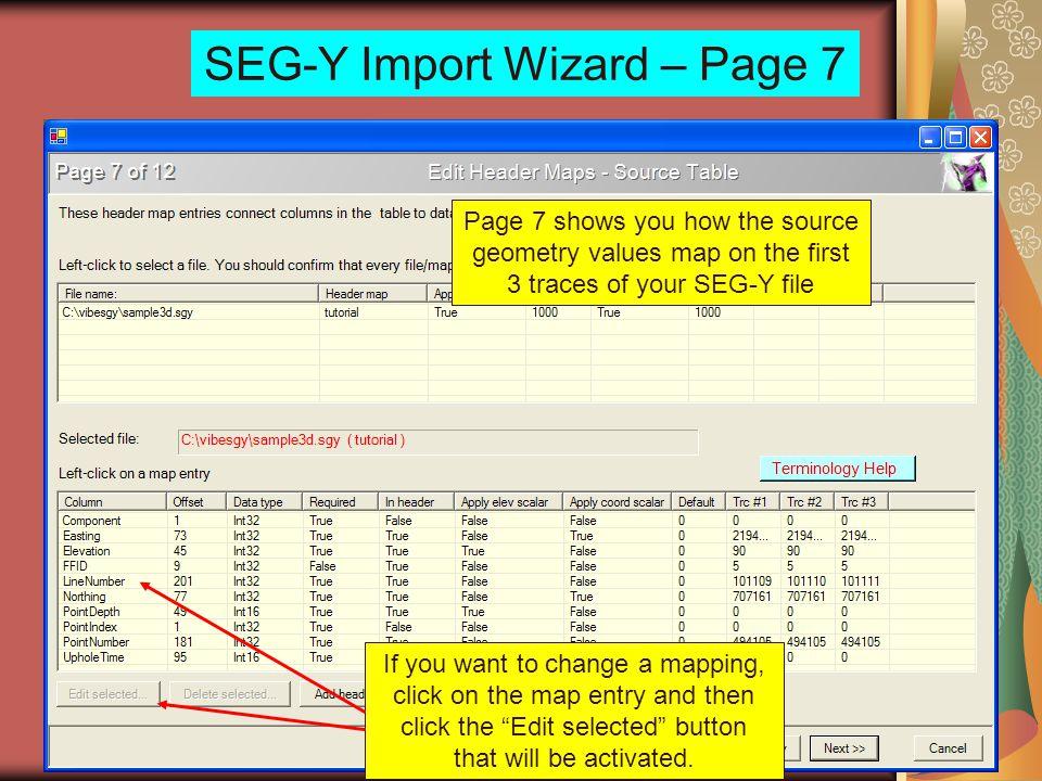 SEG-Y Import Wizard – Page 7
