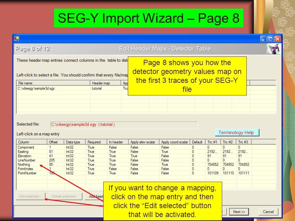 SEG-Y Import Wizard – Page 8