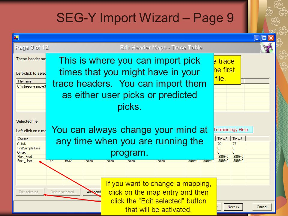 SEG-Y Import Wizard – Page 9