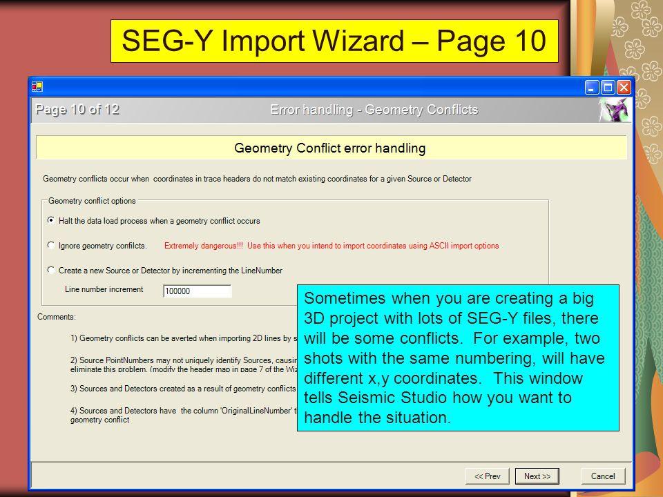 SEG-Y Import Wizard – Page 10