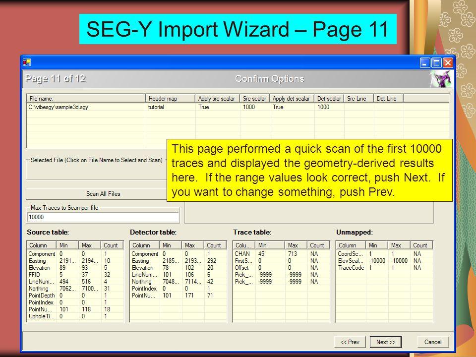 SEG-Y Import Wizard – Page 11