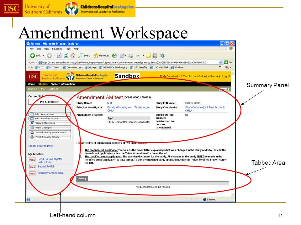 Amendment Workspace Summary Panel Tabbed Area Left-hand column