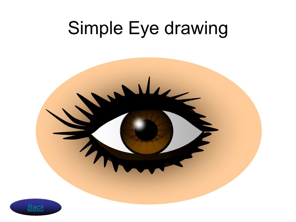 Simple Eye drawing Back