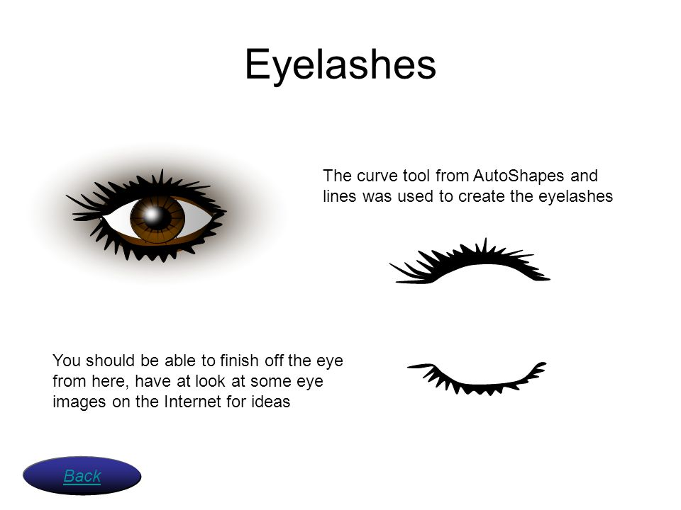 Eyelashes The curve tool from AutoShapes and lines was used to create the eyelashes.