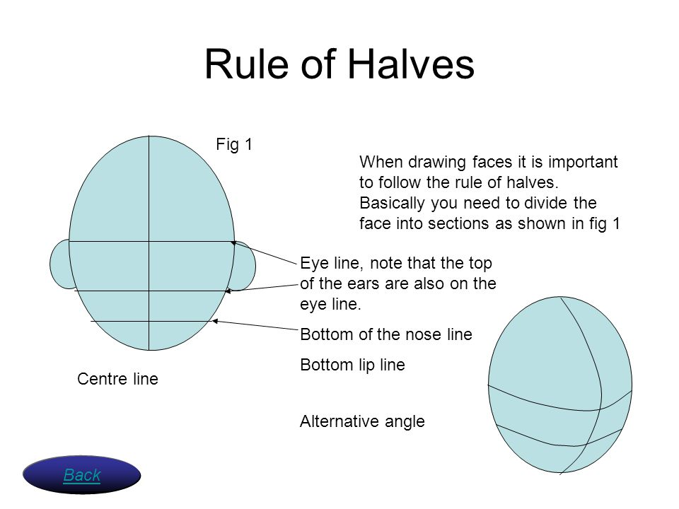 Rule of Halves Fig 1.