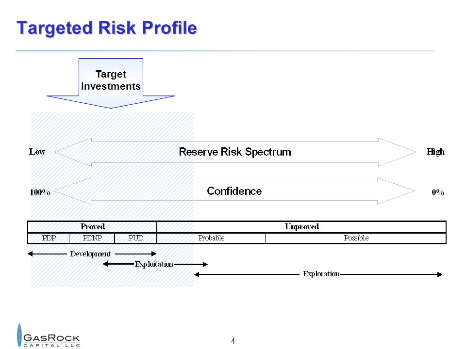 Targeted Risk Profile Target Investments