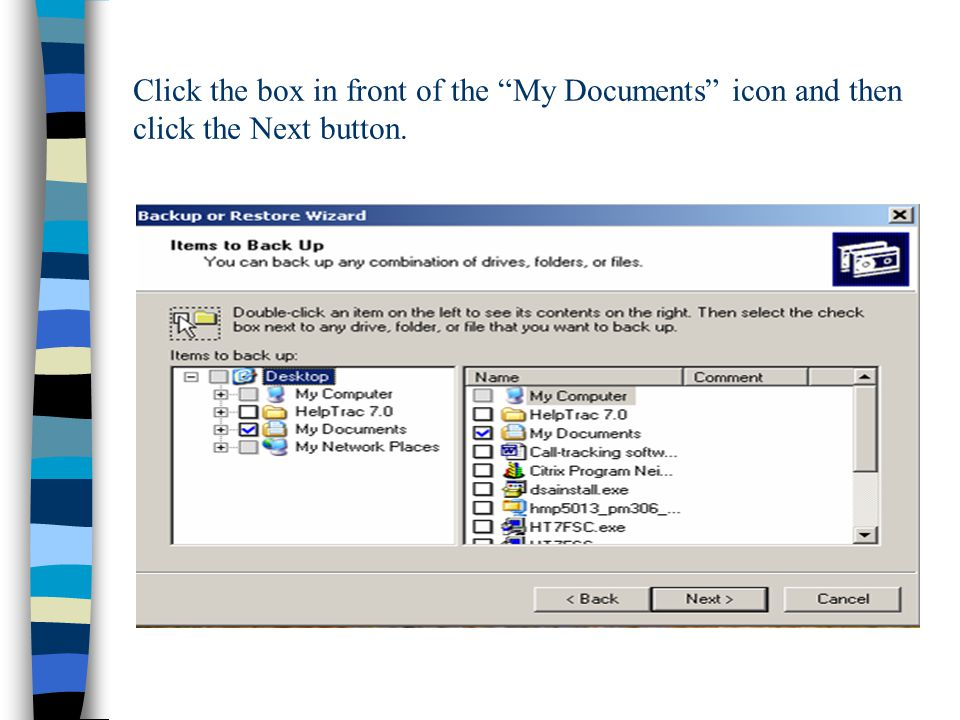 Click the box in front of the My Documents icon and then click the Next button.