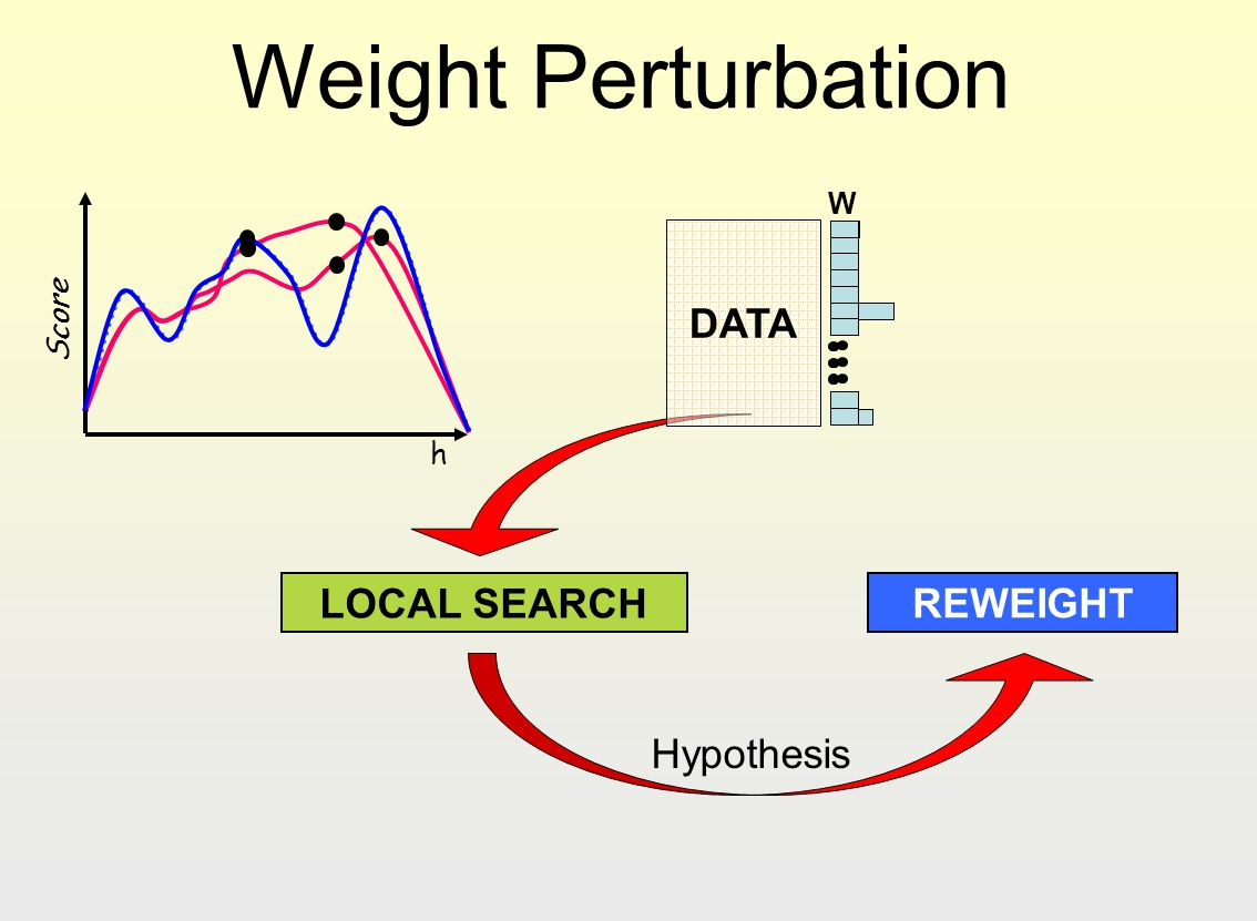 Weight Perturbation W h Score DATA LOCAL SEARCH REWEIGHT Hypothesis