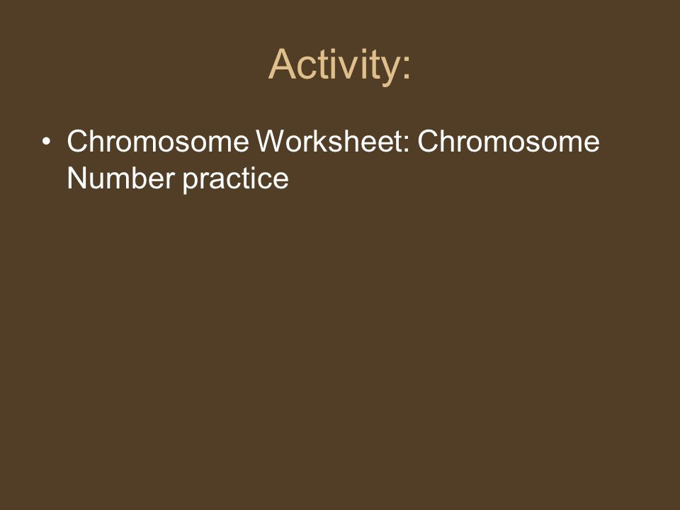 Activity: Chromosome Worksheet: Chromosome Number practice