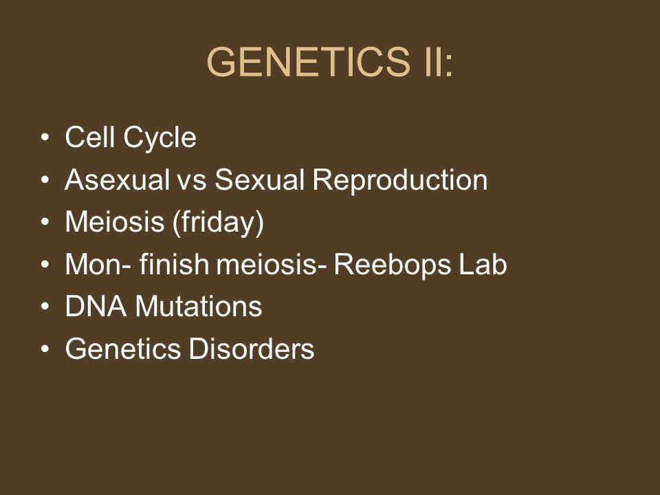GENETICS II: Cell Cycle Asexual vs Sexual Reproduction