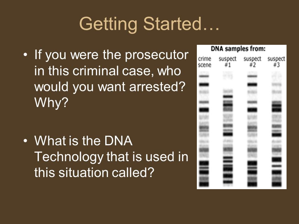 Getting Started… If you were the prosecutor in this criminal case, who would you want arrested Why