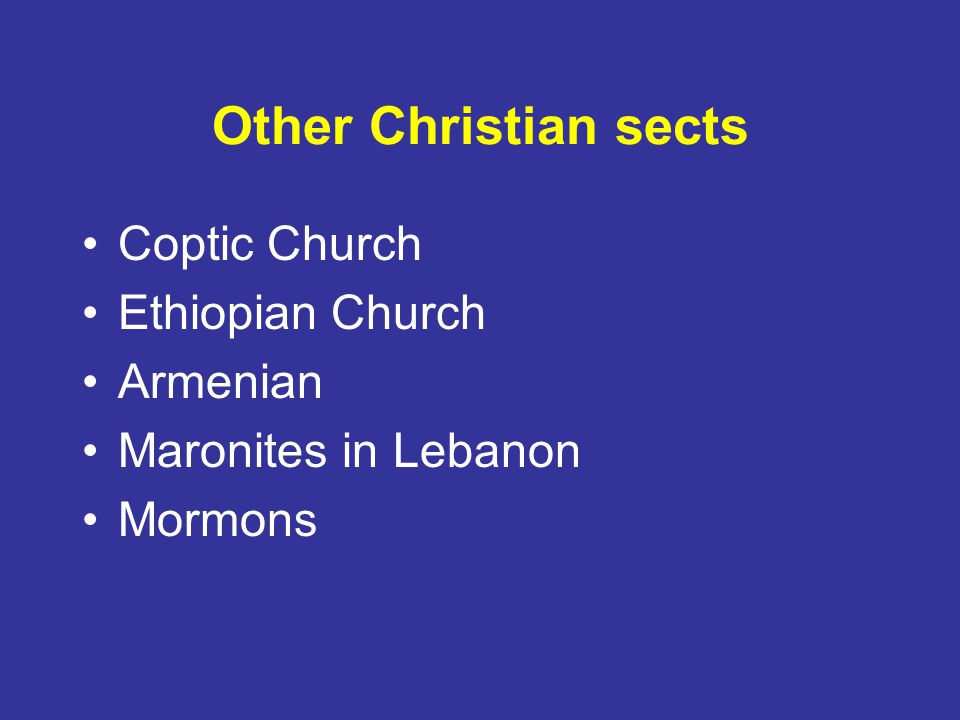 Other Christian sects Coptic Church Ethiopian Church Armenian