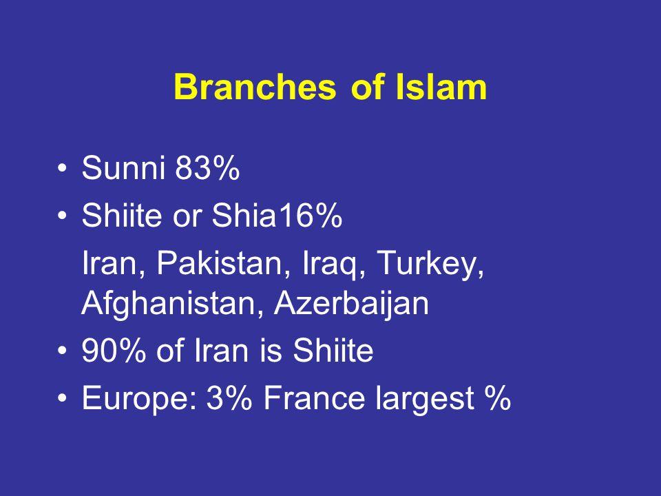 Branches of Islam Sunni 83% Shiite or Shia16%