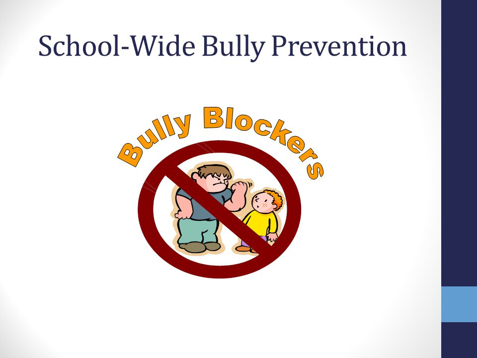 School-Wide Bully Prevention