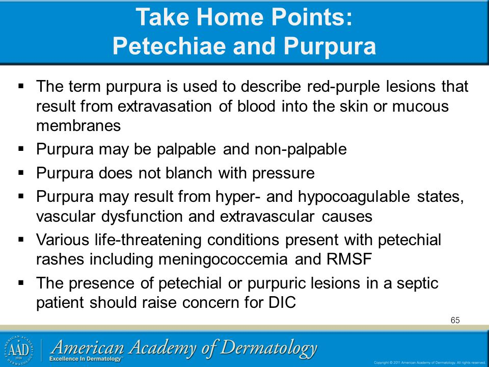 Take Home Points: Petechiae and Purpura