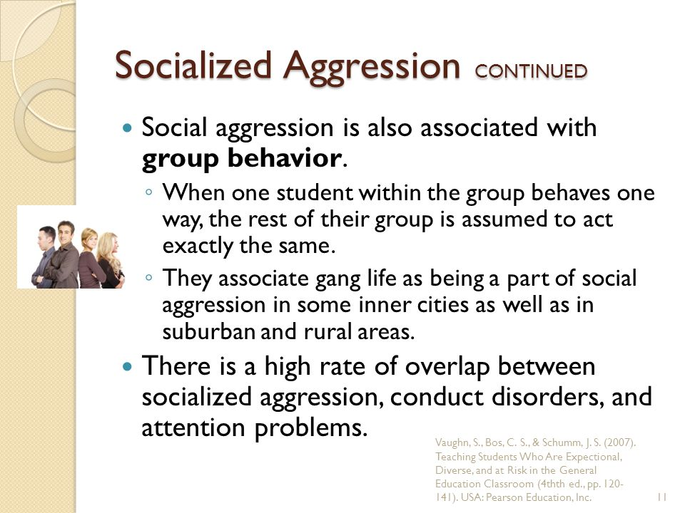 Socialized Aggression CONTINUED