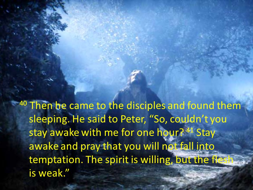 40 Then he came to the disciples and found them sleeping