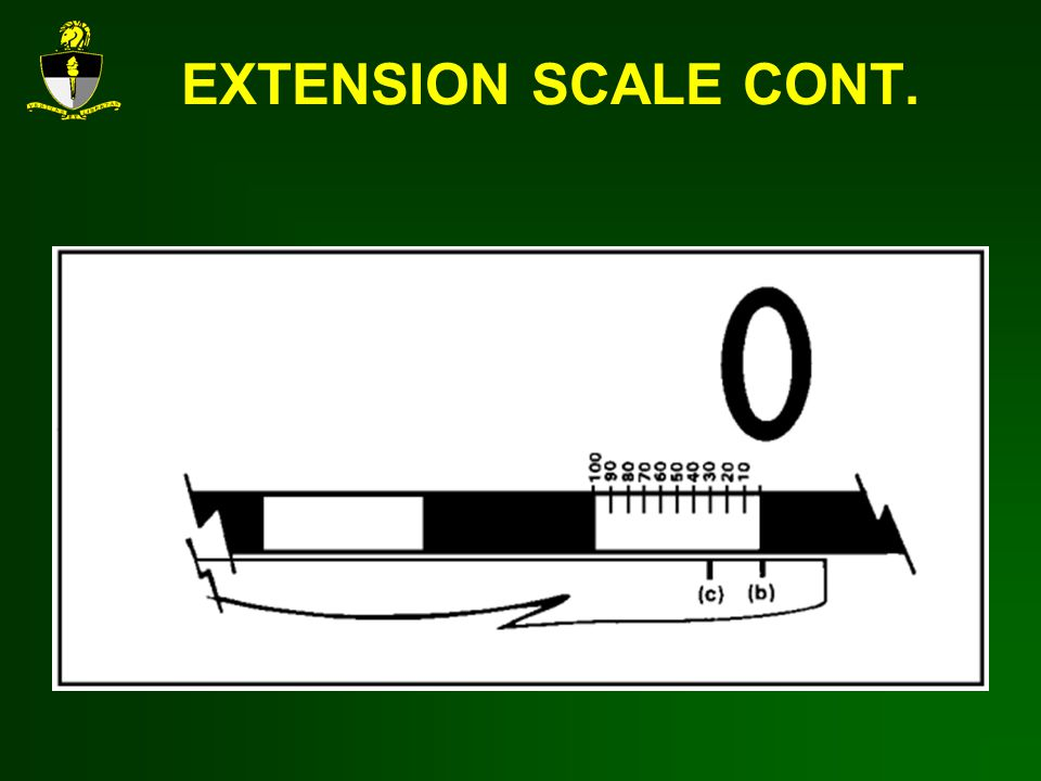 EXTENSION SCALE CONT.