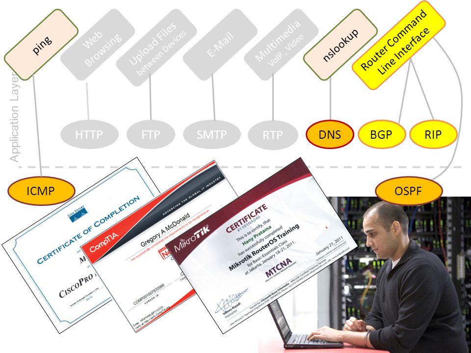 HTTP FTP SMTP RTP DNS DNS BGP BGP RIP RIP ICMP OSPF ping Web Browsing