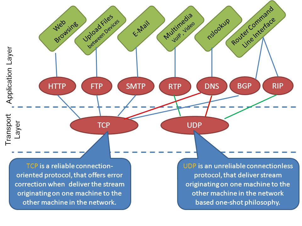 HTTP FTP SMTP RTP DNS BGP RIP TCP UDP Web Browsing  Multimedia