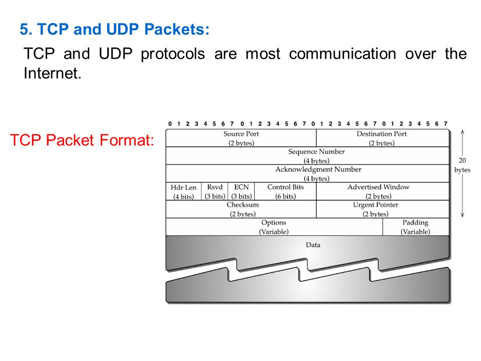 5. TCP and UDP Packets: TCP and UDP protocols are most communication over the Internet.