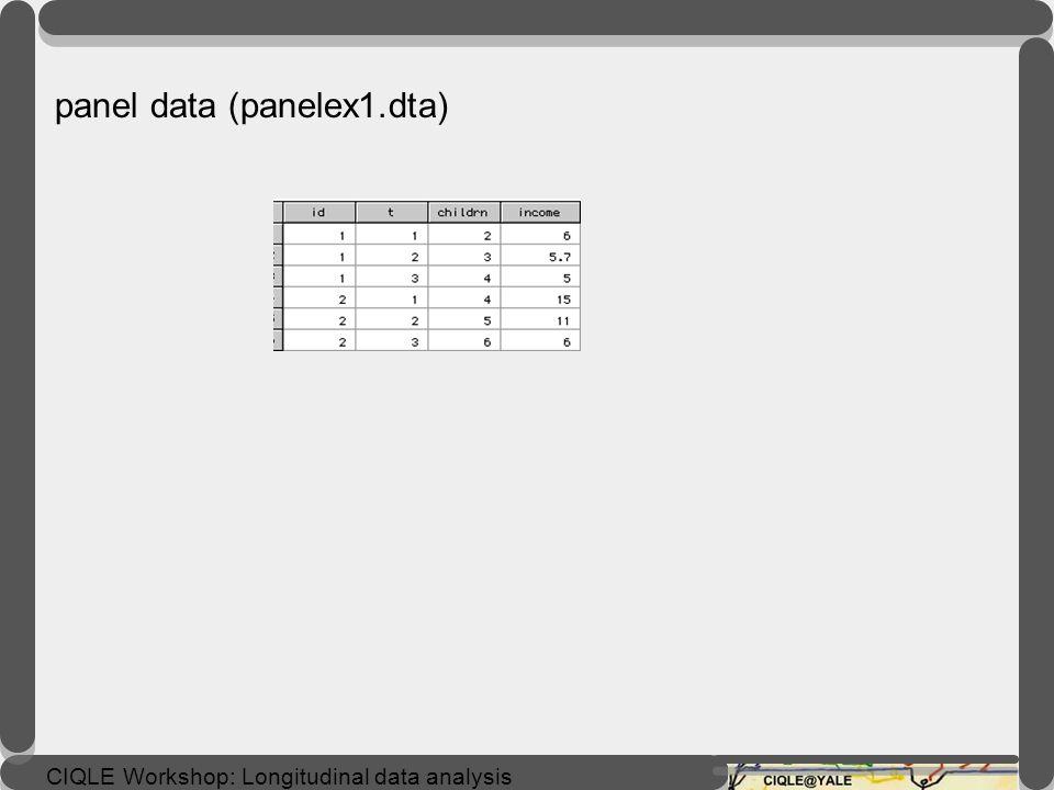 panel data (panelex1.dta)