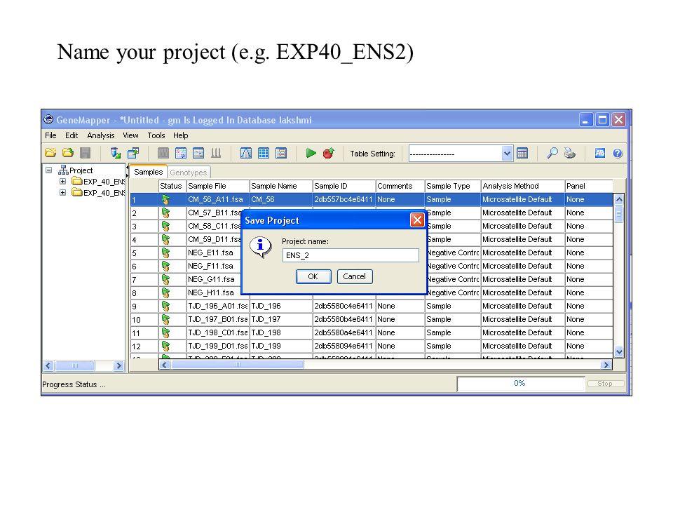 Name your project (e.g. EXP40_ENS2)