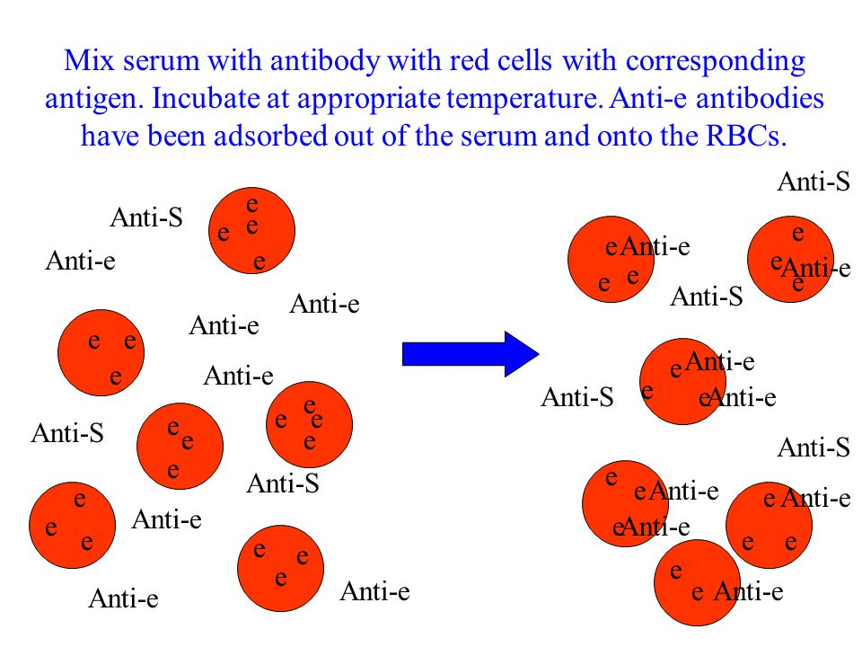 Mix serum with antibody with red cells with corresponding antigen