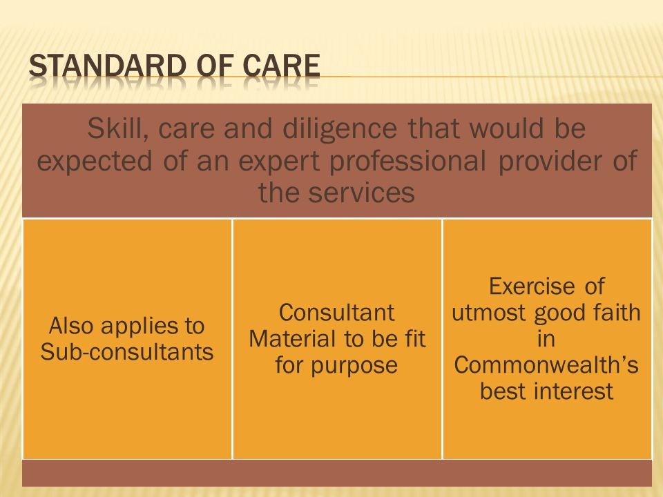 Standard of care Skill, care and diligence that would be expected of an expert professional provider of the services.