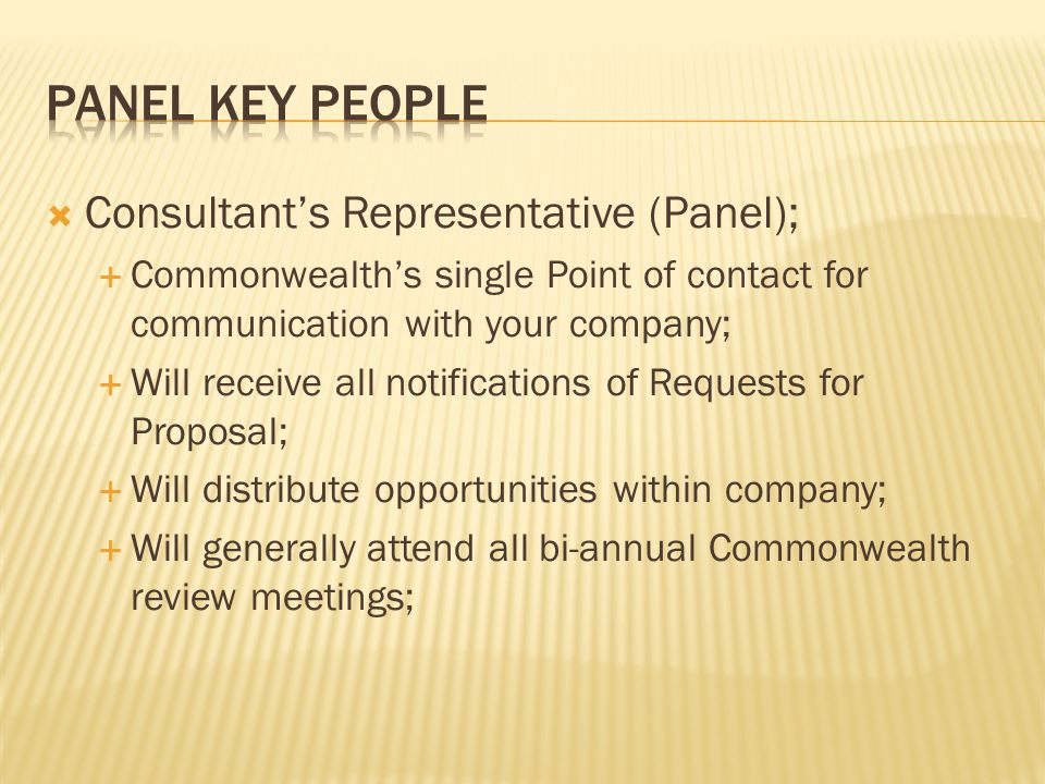 Panel key people Consultant's Representative (Panel);
