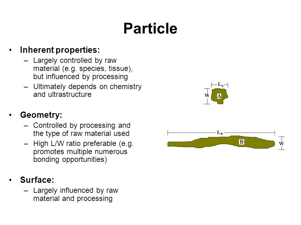 Particle Inherent properties: Geometry: Surface: