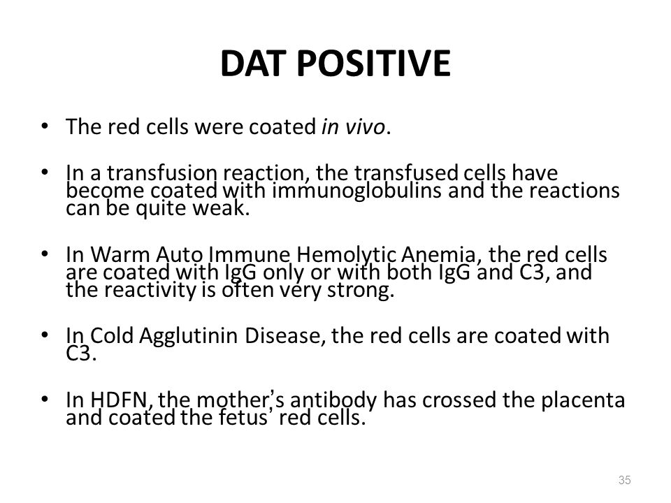DAT POSITIVE The red cells were coated in vivo.
