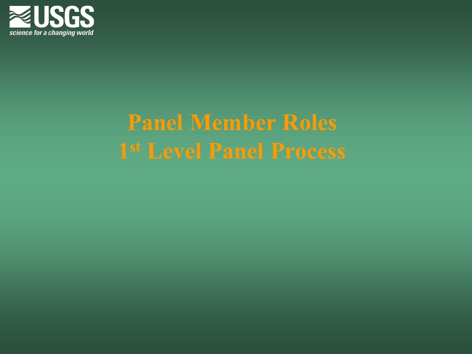 Panel Member Roles 1st Level Panel Process