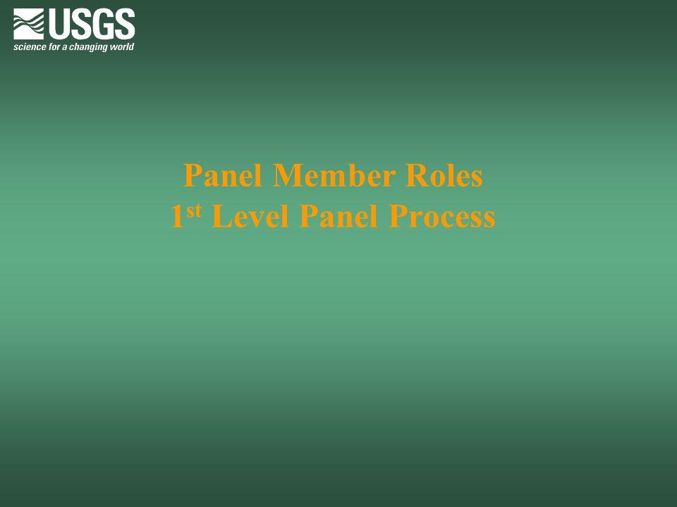Panel Member Roles 1st Level Panel Process