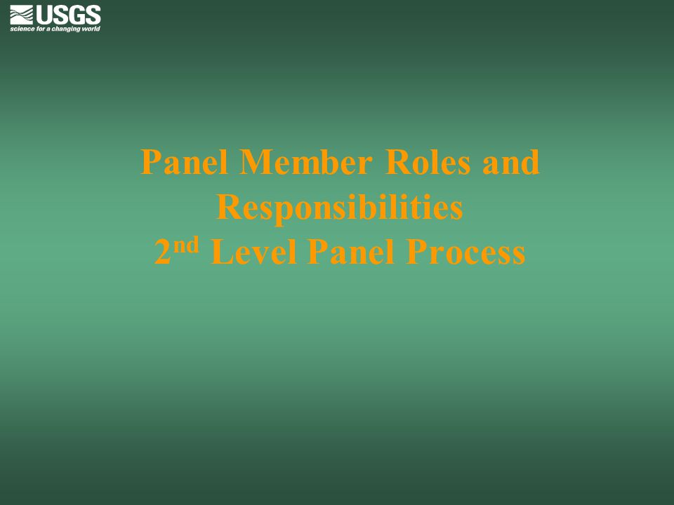 Panel Member Roles and Responsibilities 2nd Level Panel Process