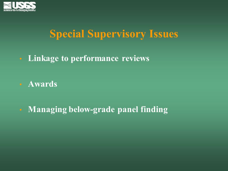 Special Supervisory Issues