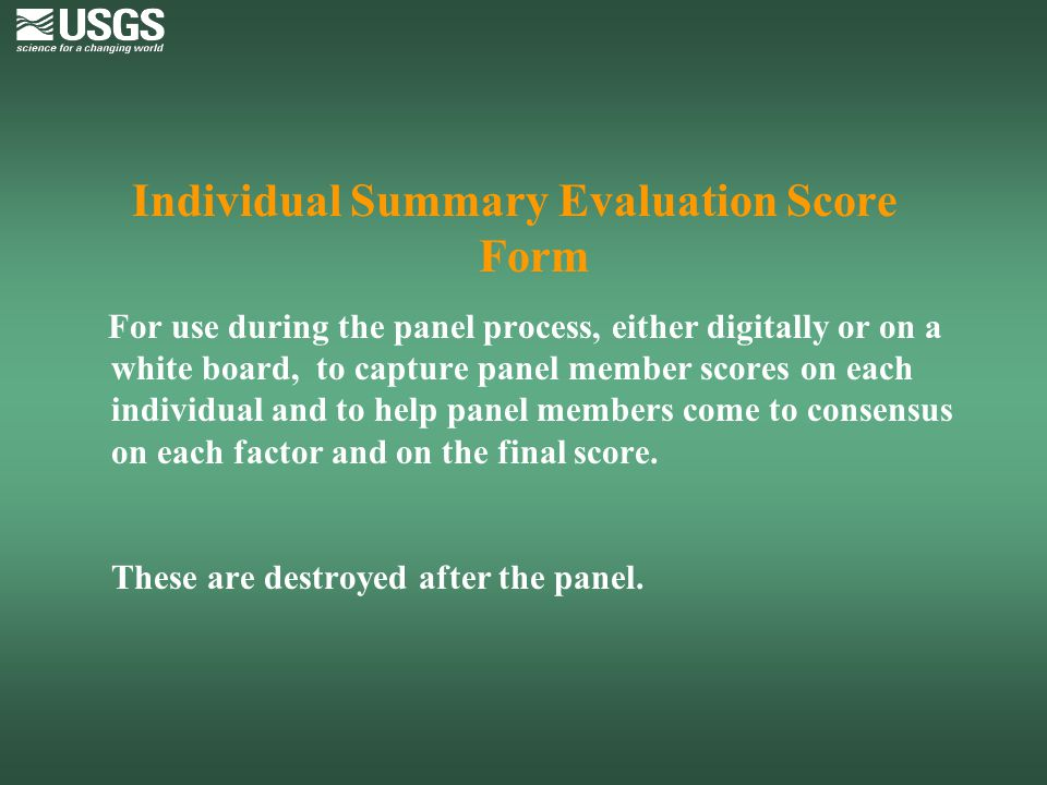 Individual Summary Evaluation Score Form