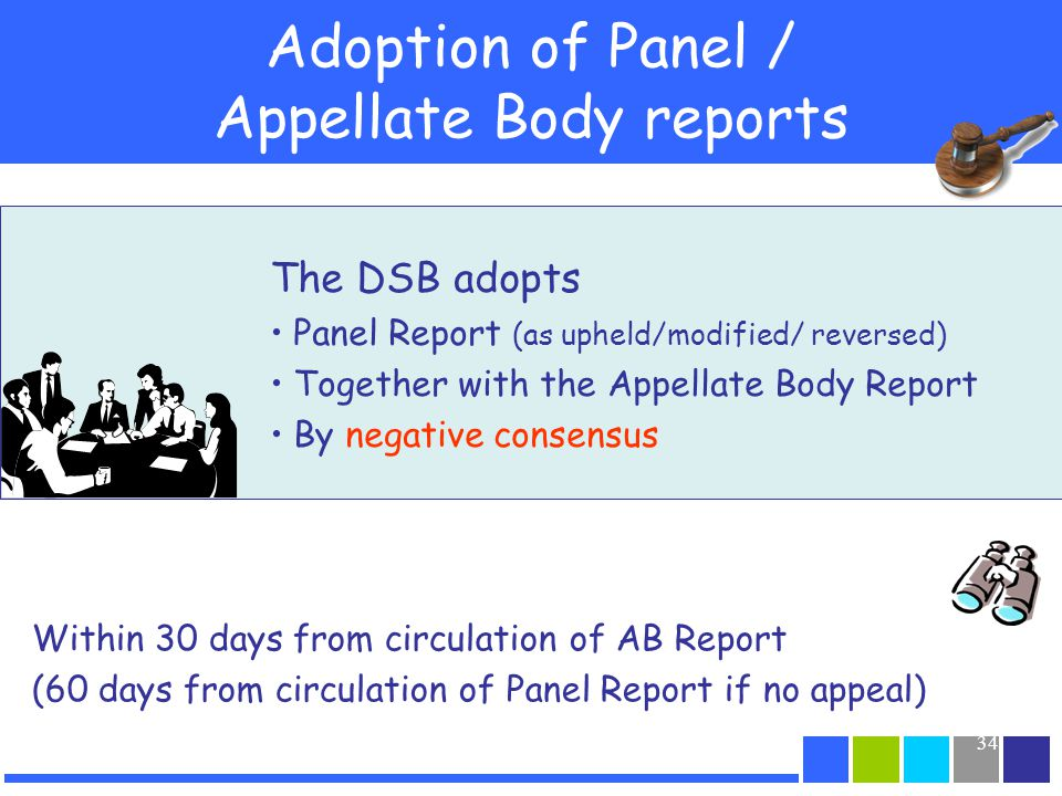 Adoption of Panel / Appellate Body reports