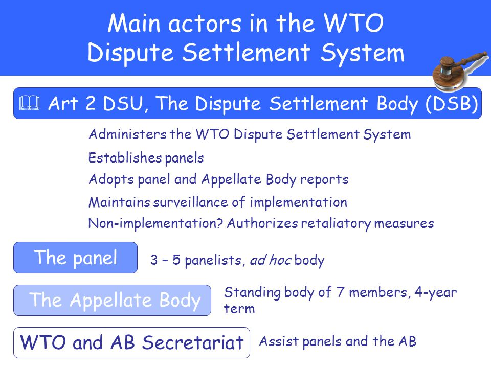 Main actors in the WTO Dispute Settlement System