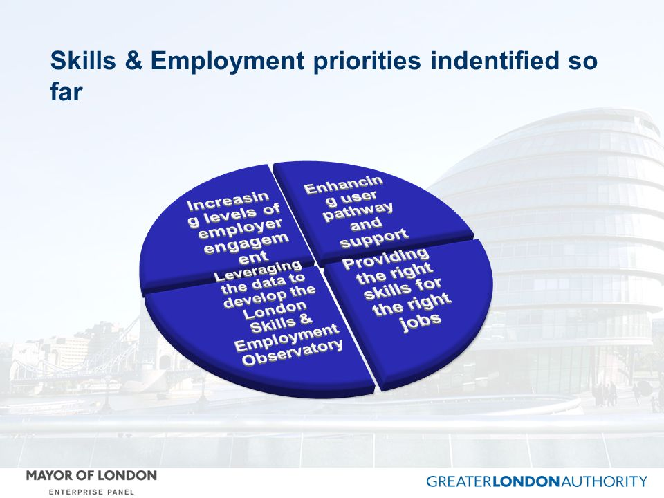 Skills & Employment priorities indentified so far