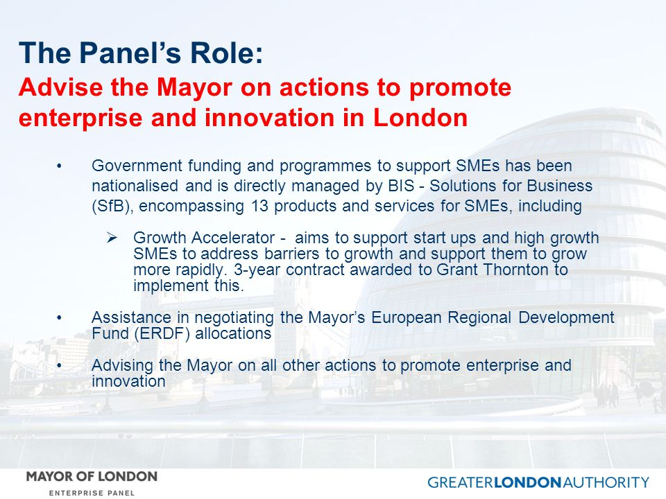 The Panel's Role: Advise the Mayor on actions to promote enterprise and innovation in London