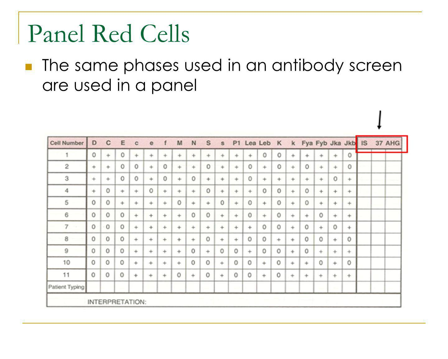 Panel Red Cells The same phases used in an antibody screen are used in a panel