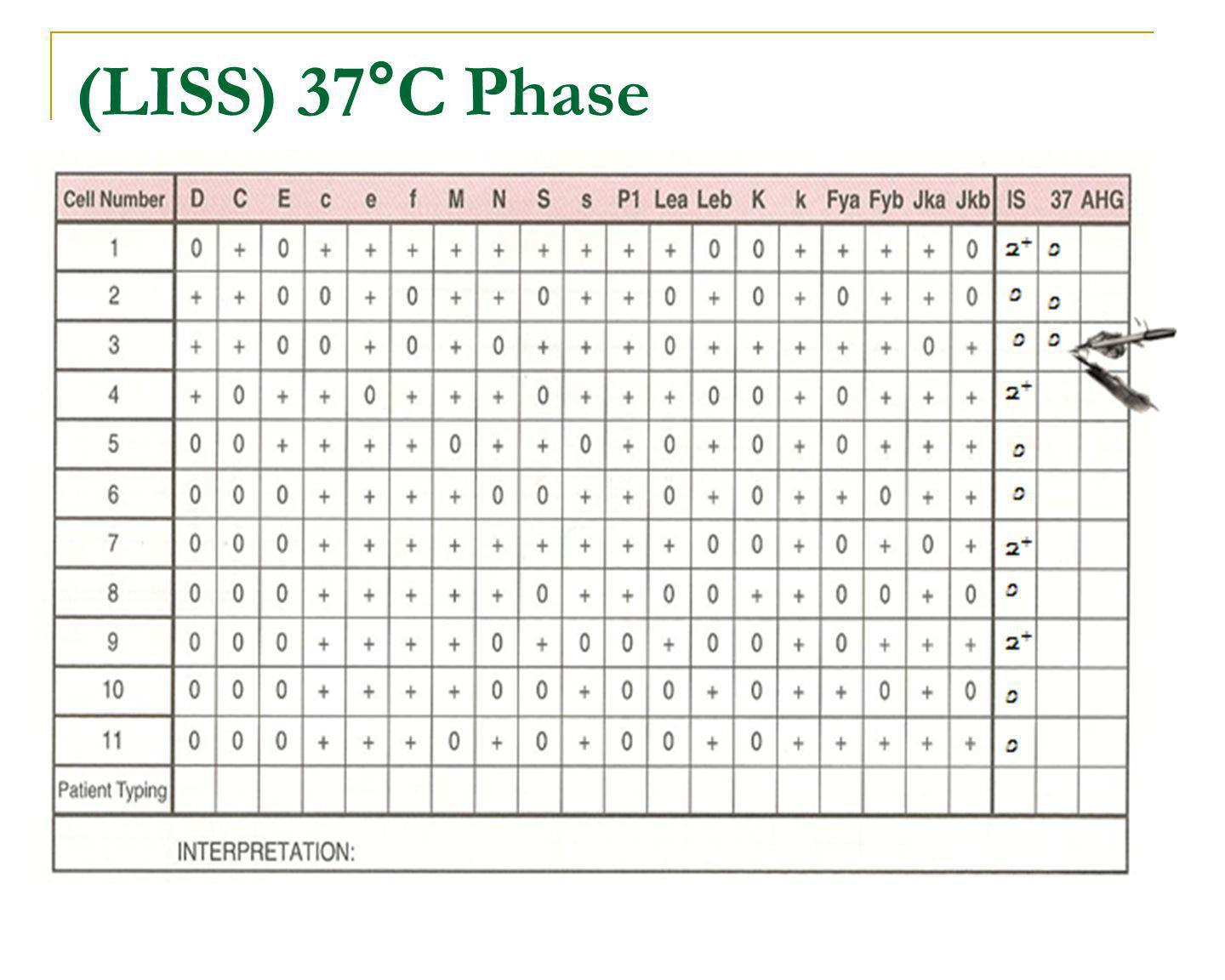 (LISS) 37°C Phase