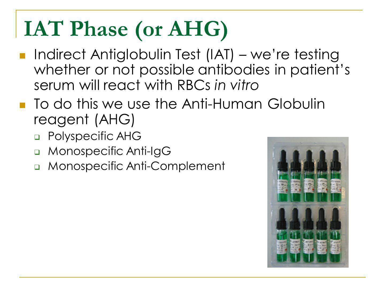 IAT Phase (or AHG)