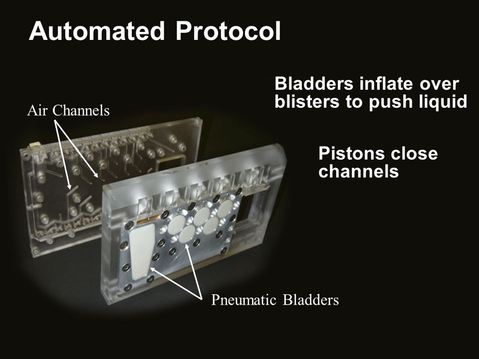 Automated Protocol Bladders inflate over blisters to push liquid