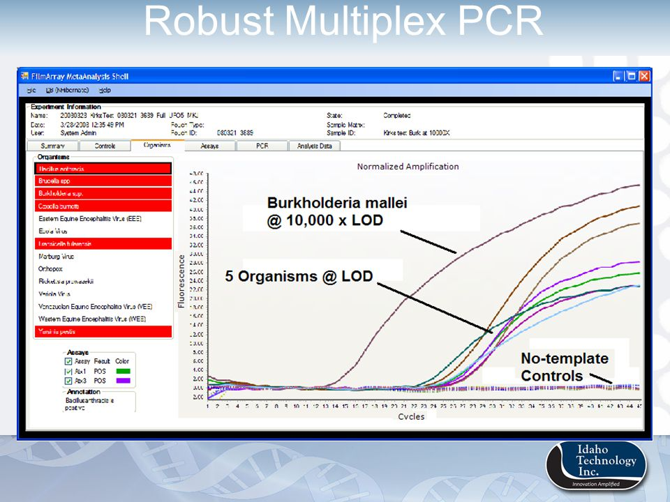 Robust Multiplex PCR